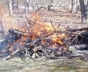 controlled brush fire